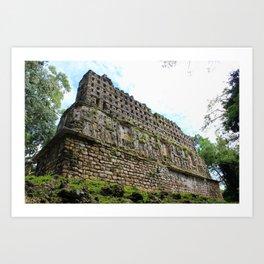 Ruins of Yaxchilan Art Print