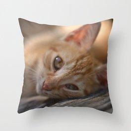 Idleness Throw Pillow