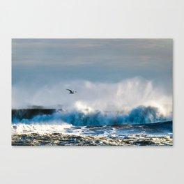 Wave Cruiser Canvas Print