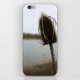 In the Wind iPhone Skin