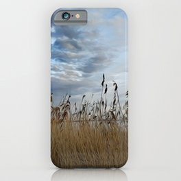 Sky Grasses Lake Landscape Painting Oil Painting iPhone Case