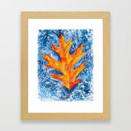 FLOATING ORANGE LEAF Framed Art Print