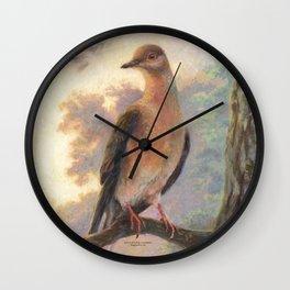 Passenger Pigeon - Martha Finds Her Flock  Wall Clock