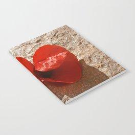 Red poppy. Notebook