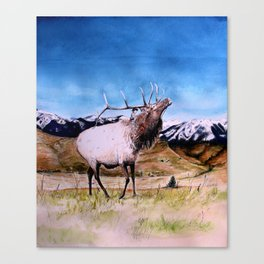 Elk and child Canvas Print
