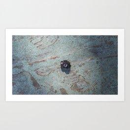 turquoise floor Art Print