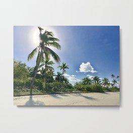 Sunny Palms Metal Print