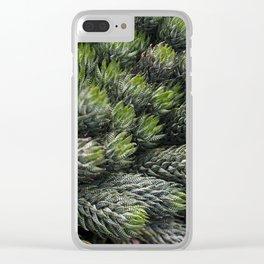 Haworthia coarctate - botanical photography Clear iPhone Case