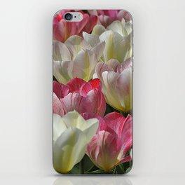 Tulpen iPhone Skin