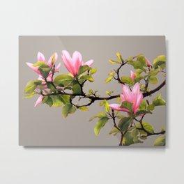 Magnolia Branch Metal Print