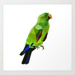 Eclectus parrot Geometric bird art Art Print