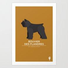 bouvier Art Print
