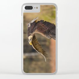 Bald Eagle in Flight Clear iPhone Case