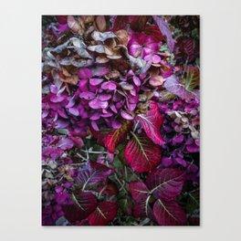 Holy Hydrangea VI Canvas Print