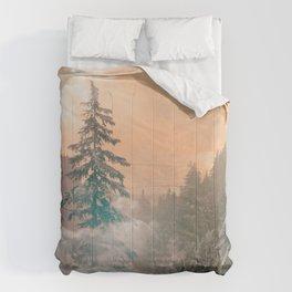 persephone. Comforters