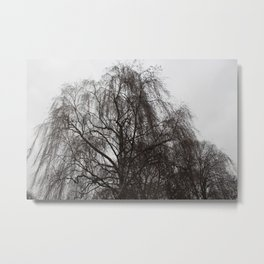 Skansen Grey #1 Metal Print
