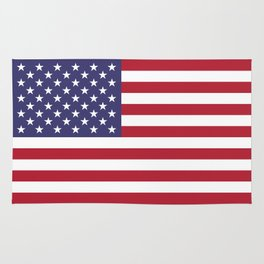National flag of the USA - Authentic G-spec scale & colors Rug