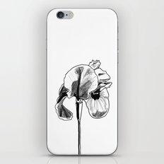 Desert Iris iPhone & iPod Skin