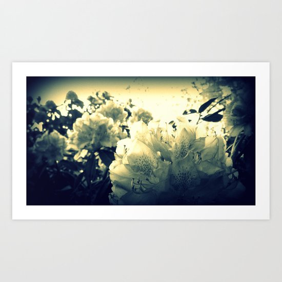 Dancing in the Light Art Print