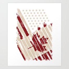 Canada USA Flag Art Print