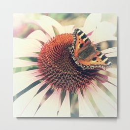 The Butterfly and the Flower Metal Print