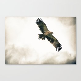 In Flight Entertainment Canvas Print