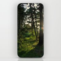 narnia iPhone & iPod Skins featuring Entering Narnia by Ananya Ghemawat