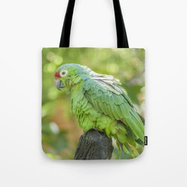 Tropical Parrot at Zoo, Guayaquil Tote Bag
