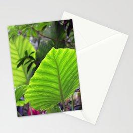 tropikew Stationery Cards