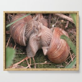 love snails Serving Tray