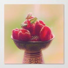 Raspberries fruit enjoyment Canvas Print