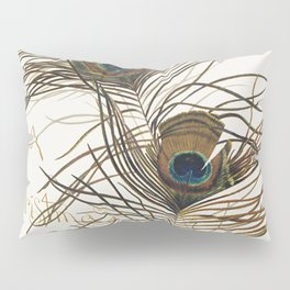 Aladdins Lamp Christmas and birthday cards with poems by Joaquin Miller peacock feathers Pillow Sham