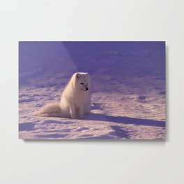 Snow Day 13 Metal Print