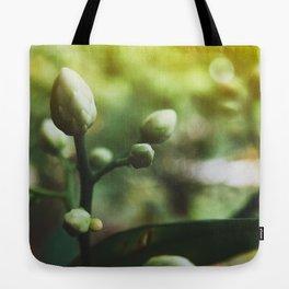 Grow: 003 Tote Bag
