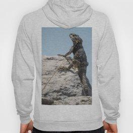 Lizard Sunbathing On A Rock Vector Hoody