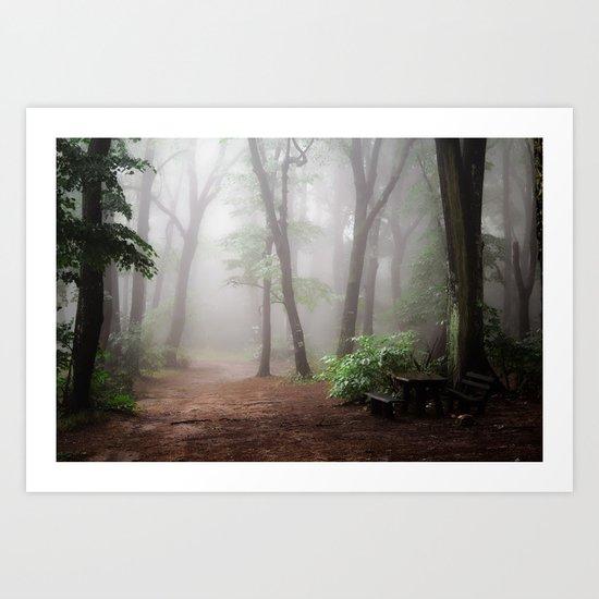 Misty Woods #adventure #photography Art Print