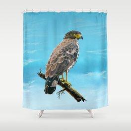 Congo Serpent Eagle Shower Curtain