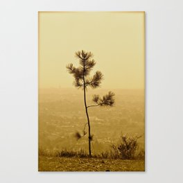 If I Were A Tree... Canvas Print