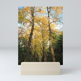 Ginkgo biloba trees Mini Art Print