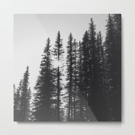 Contrast Forest Metal Print
