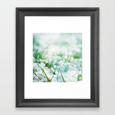 Frosted Morning; Framed Art Print