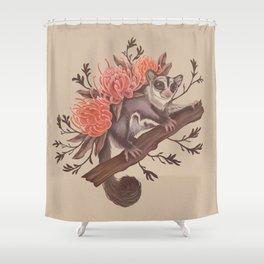 Sugar Glider Shower Curtain