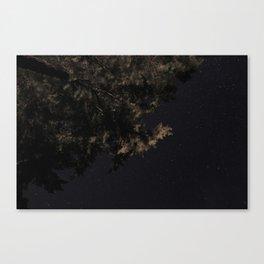 Stars at Night Canvas Print
