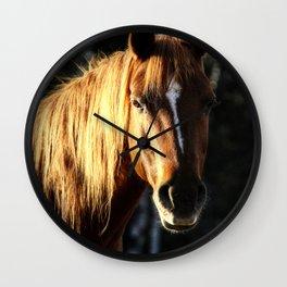 Golden Arabian Pony Portrait Wall Clock