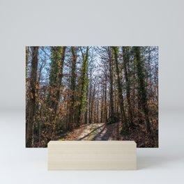 Forest path Mini Art Print