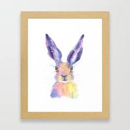 Rainbow Hare Framed Art Print