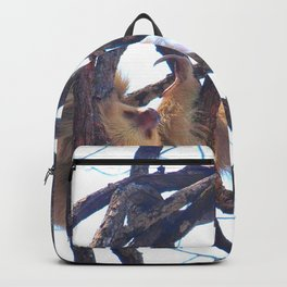 Two-toed sloth and orchids in Costa Rica Backpack
