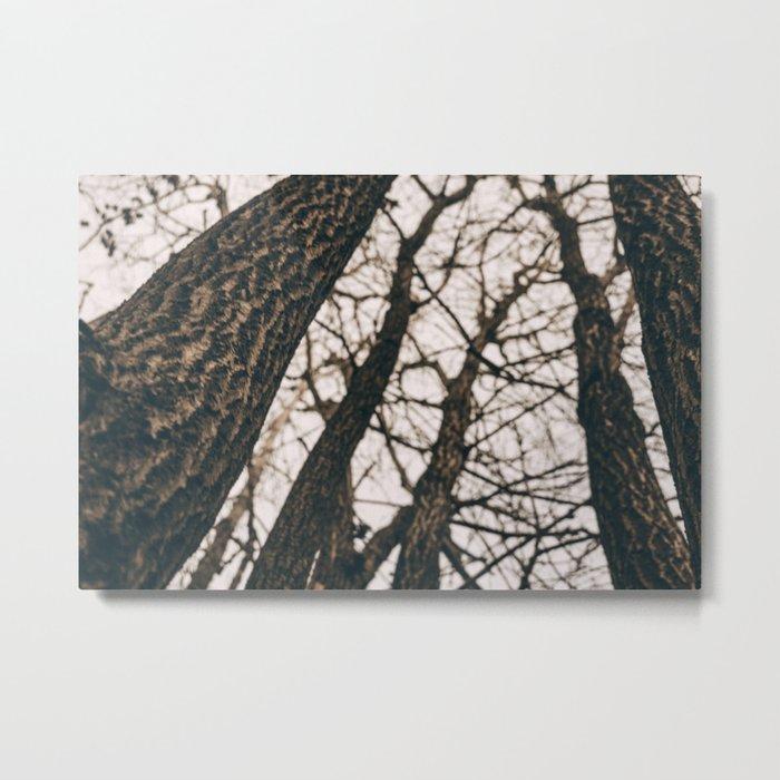 Fall Hike Metal Print
