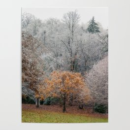 Autumn Meets Winter in the grass meadow. Poster