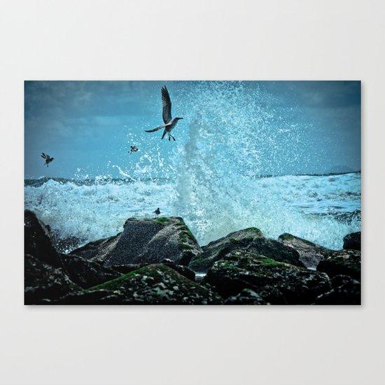 Thrill Seeker Canvas Print